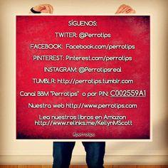 Perrotips está cerca de ti en nuestras redes.  Síguenos #perrotips