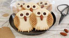 Atelier pâtisserie : mes biscuits « hibou »