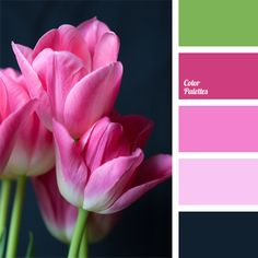 This range is based on the combination of contrasting colors – including the moods they create. Dark blue, very close to black, is diluted with spring, bright, and cheerful pink. Green, lilac, and light pink are added to make the combination look harmonious. If you arrange a wedding in these colors, it will definitely be the event of the year.