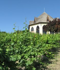 Boise Day Trips: Visiting the Ste. Chapelle Winery & the Sunnyslope Orchards - Yahoo! Voices - voices.yahoo.com