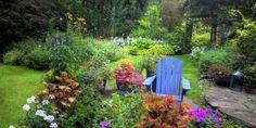 50 Gardening Tips - Landscaping Ideas