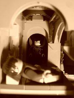 Nosferatu - film scene