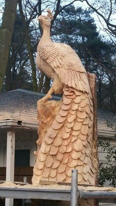 Peacock chainsaw carving by Sander Boom