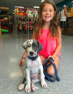 What is more cute than a young girl with her new puppy? This is Peighton and her new pup Winston. This Great Dane pup came in for an Earthdog leash and collar and some training treats. #greatdane #puppy #puppiesofinsta #puppies #puppiesofig #puppiesofinstagram #dog #dogsofinstagram #dogs #dogsofgrandrapids #earthdog #picoftheday #petoftheday