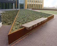 Rough&Ready CorTen Tree Isles with straight lines +  public bench
