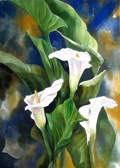 Calla Lily Painting by Alfred Ng Lily Painting, Painting & Drawing, Art Floral, Watercolor Flowers, Watercolor Paintings, Watercolours, Calla Lilies, Canadian Artists, Love Art