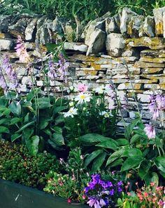 Ireland flower bed