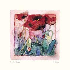 Shirley Trevena-Deep Red Poppies
