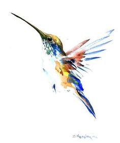 Resultado de imagem para hummingbird flower watercolor
