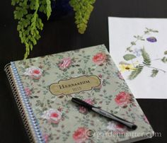 What's an Herbarium? I'll tell you what it is, where it came from and how you can make you own. ~ gardenmatter.com