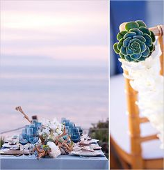Succulents on tables and chairs.