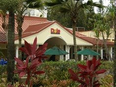 Dole Plantation - Oahu...  Go here every few months to ride the train & get the kiddies some Dole Whip.