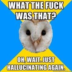BIPOLAR OWL