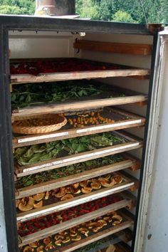 Solar dehydrator made from old refrigerator
