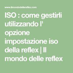 ISO : come gestirli utilizzando l' opzione impostazione iso della reflex | Il mondo delle reflex