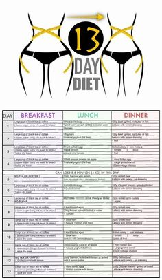 diet plan for endomorph to lose weight  weight loss
