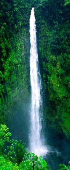 Akaka Falls on The Big Island of #Hawaii #waterfall