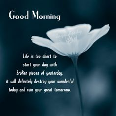Good Morning Posts for Facebook | ... World Of Fun: Good Morning Quote | Facebook Good Morning Status