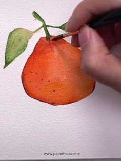 SMART DESIGN: The genius telescopic design locks the light source and improves the brightness of the picture, preventing Watercolor Fruit, Watercolor Tips, Fruit Painting, Watercolour Tutorials, Watercolour Painting, Watercolors, Watercolor Paintings For Beginners, Watercolor Techniques, Easy Paintings