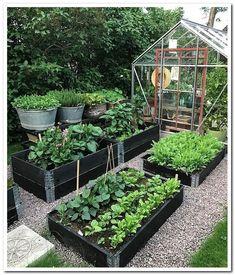 Best 52 Vegetable Garden Design Ideas for Green Living - Bepflanzung Backyard Vegetable Gardens, Potager Garden, Vegetable Garden Design, Veg Garden, Garden Types, Garden Edging, Garden Cottage, Edible Garden, Easy Garden