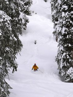 Ski Ski And Snowboard, Skiing, Outdoor, Ski, Outdoors, Outdoor Games, The Great Outdoors