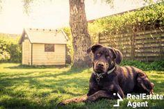 #dogs, #yard, #dogsyard, #friendlydogs Luxury Dog House, Build A Dog House, House Dog, Expensive Dogs, Cool Dog Houses, Pet Houses, Dog Garden, Niches, Dog Hacks