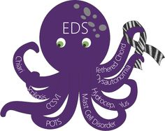 The EDS octopus and some of the problems that comes with Ehlers-Danlos Syndrome