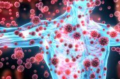 Neue Panikmache: Coronavirus SARS-CoV-2 doch kein reines Atemwegsvirus? Streptococcus Pneumoniae, Physical Stress, Work Stress, Lymphocyte B, Hepatitis C, Weak Immune System, High Blood Sugar Levels, Vitamin C Benefits, Lunge