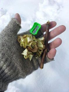 use a pencil sharpener and a pencil sized twig to create shavings for fire tinder