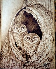 owls / pyrography / burned into wood- – Schnitzerei Wood Burning Crafts, Wood Burning Patterns, Wood Burning Art, Wood Patterns, Pyrography Patterns, Tree Sketches, Tree Carving, Scratchboard, Gourd Art