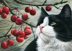 Irina Garmashova - Cats & Botanicals: Crab Apples