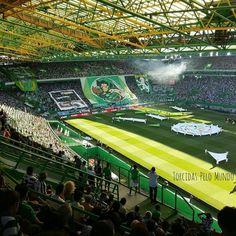 Sporting x Porto Torcida do Sporting ontem no clássico português!