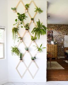 This indoor plant wall is one of my favorite places in the house!! Get the tutorial Trellis Wall on vintagerevivals.com #fearlessdiy