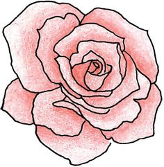 Very similar shape to the rose I want, but with finer and more detailed lines and no colour, as well as a stem with three leaves.