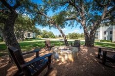 Get an inside look at the beautiful apartment homes and community at Griffis SoCo Austin in Austin, TX. Austin Apartment, Austin Tx, Great Places, Apartments, Tours, Bath, Bedroom, Plants, Beautiful