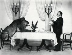 Alfred Hitchcock serving tea to Leo the Lion (the mascot for the Hollywood film studio MGM).