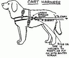Dog carting harness