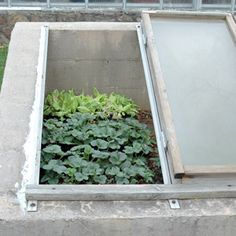 (keep in mind for my new cold frame) A good rule of thumb: When outdoor temperatures are above 40°F, prop open the lid 6 inches; when the outdoor temps clear 50°F, remove the lid.