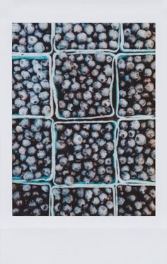 farmers market blueberries / created by @caitlin_cawley for #instax