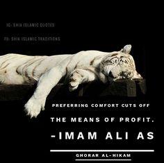 Hazrat Ali Sayings, Imam Ali Quotes, Muslim Quotes, Religious Quotes, Islamic Quotes, Islam Beliefs, Islamic Teachings, Quotations, Qoutes