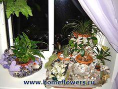 http://uploads.ru/i/G/q/p/GqpKj.jpg