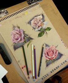 Some roses and elemental symbols. Done in colored pencil and marker on toned drawing paper. Ill add the metallic ink to it soon. These are available in my etsy store.