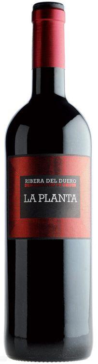 La Planta 2013 - Do Ribera de Duero - Bodegas Arzuaga Navarro - Vino tinto joven con una crianza de 6 meses en barricas de roble francés y americano - 100% Tinto Fino - 14,6%