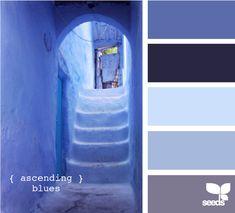Ascending blues color scheme