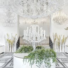 A crystal forest is glowing in the heart of Prague. Experience Preciosa Lighting's crystal and glass Bohemian chandeliers at Preciosa showroom. Prague Things To Do, Showroom Design, Crystal Decor, Luxury Lighting, Czech Glass, Icon Design, Chandeliers, Stuff To Do, Glow