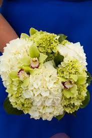 Image result for sofreh aghd hydrangeas