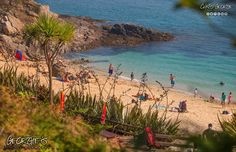 Lets face it, who needs to travel to the Caribbean when you have Herm Island's Belvoir Bay a hop skip & a jump by your back door on a day like this! #GreatThings #LocateGuernsey #SafeHaven  Link to the whole collection of 'Georgie's Guernsey' :-http://chrisgeorge.dphoto.com/#/album/4daaes  Picture Ref: 22_08_16