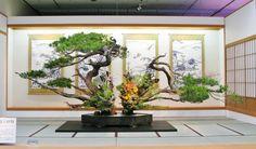 いけばな池坊550年祭特別展:今回の特別展の目玉は伝説の大砂物の復元。