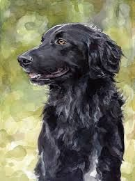 Image result for how to paint a flat coat retriever
