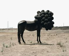 the black rider with balloons